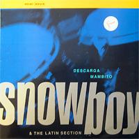 snowboy_descarga-mambito