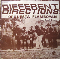 orq_flamboyan_diffrentdirections_