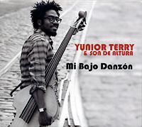 yunior-terry-mi-bajo-danzon_2012