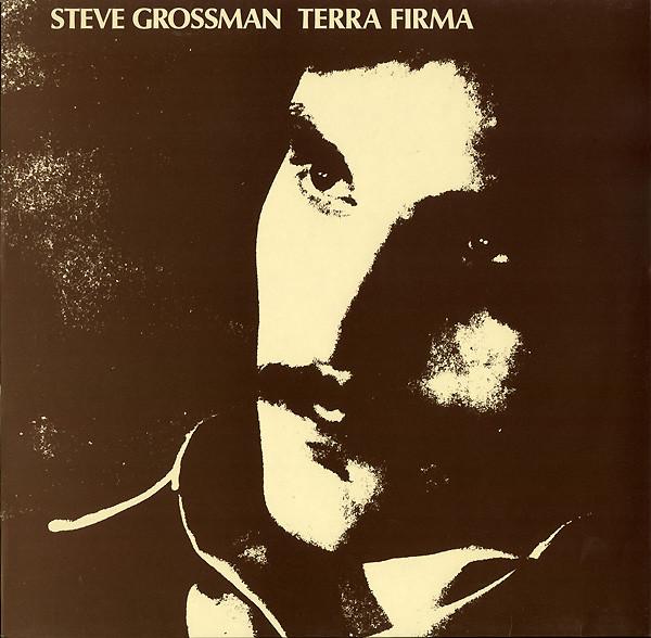 steve-grossman_terra-firma_