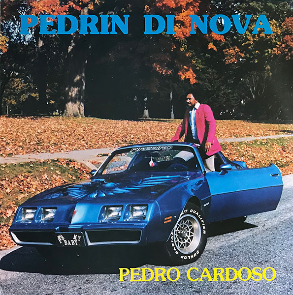 pedro-cardoso_pedrin-di-nova_1983_casa-nova-1009